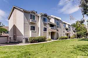 MLS # 9916813 : 1332 S CATHAY COURT 101